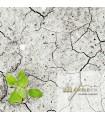 Informe de suelos preliminar o inicial de la empresa - 2 centros